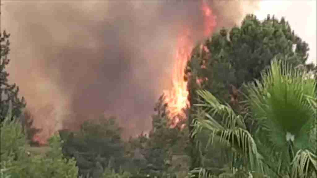 Israel Wild Fires3