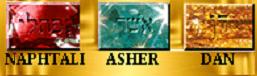 Naphtali Asher Dan