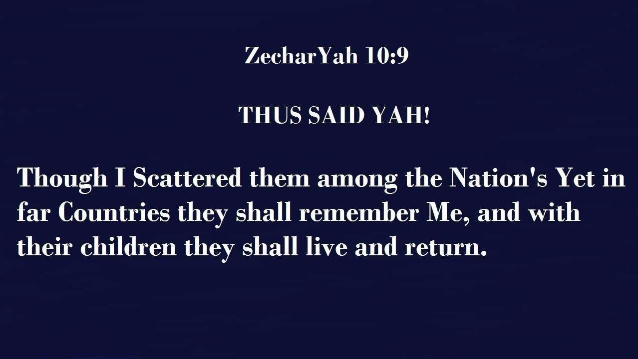 ZecharYah 10 9