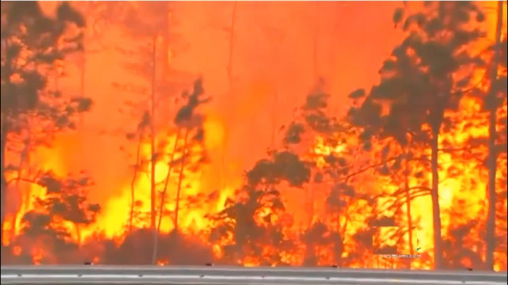1 florida Brush Fires1