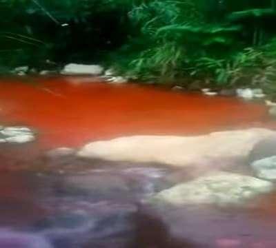 Jamaca Blood River