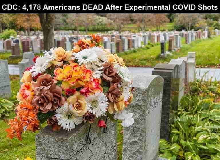 Flowers On A Tombstone In A Cemetary CDC COVID Vaccine Deaths 768x560 1